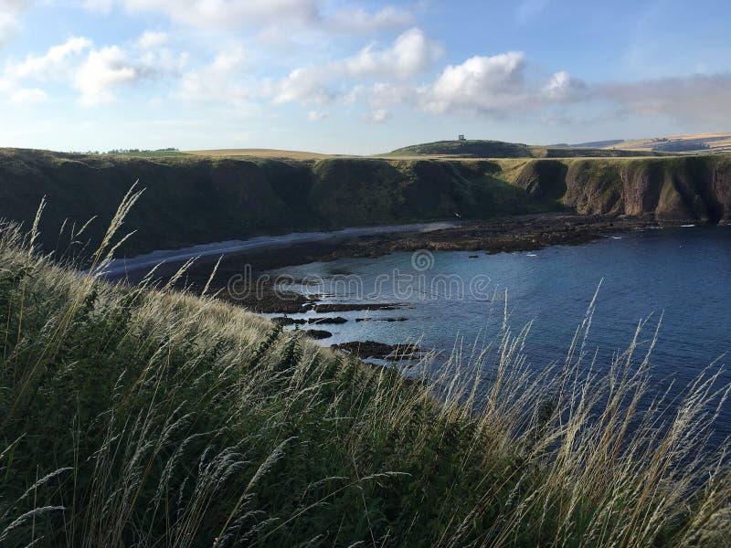 Linea costiera della Scozia al castello di Dunnottar immagini stock libere da diritti