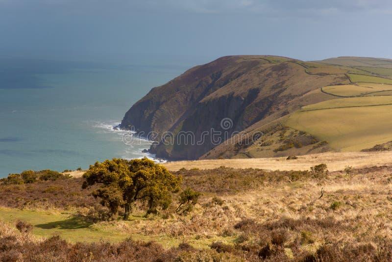 Linea costiera di Devon del nord fra Ilfracombe e Lynmouth fotografie stock