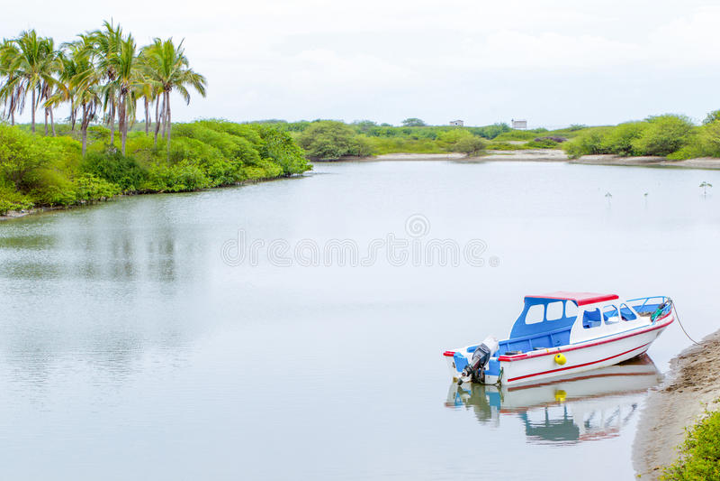 Linea costiera di ecuadoriano dell'isola di Puna immagini stock libere da diritti
