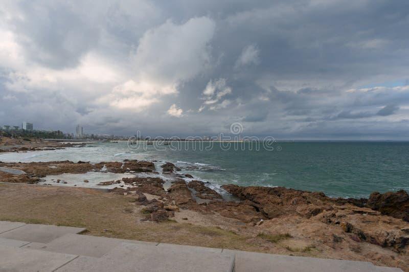 Linea costiera di Port Elizabeth con la vista della città e del porto marittimo nella distanza immagine stock libera da diritti