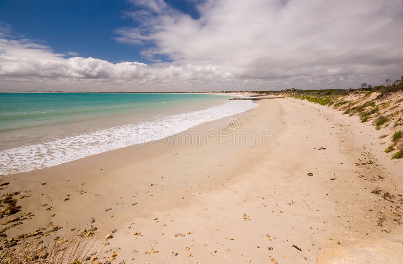 Linea costiera di Southend fotografia stock
