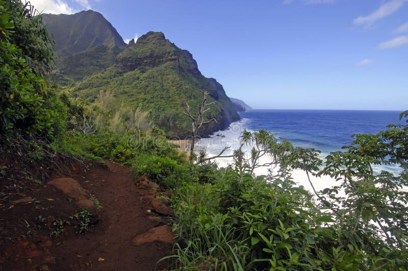 Linea costiera e scogliere irregolari lungo la traccia di Kalalau di Kauai, Hawai fotografie stock libere da diritti