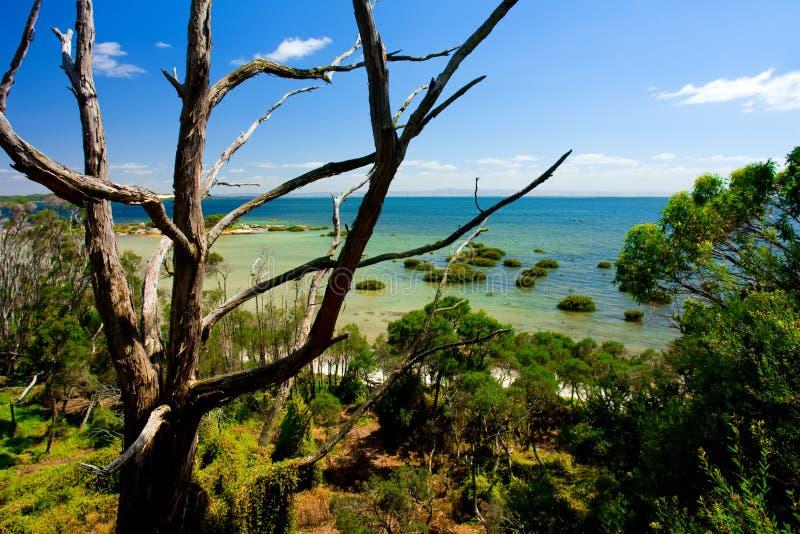 Linea costiera scenica fotografia stock