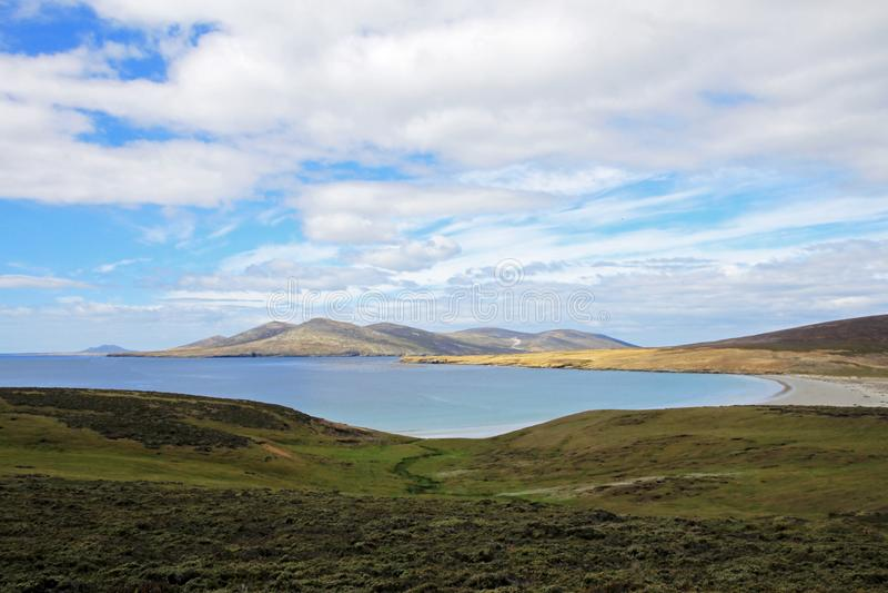 Linea costiera, spiaggia all'isola di Saunders, Falkland Islands fotografia stock