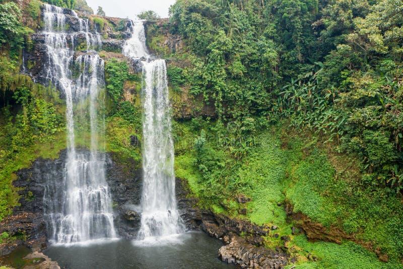 Linea di flusso continuo cascata dall'alta montagna nel Laos fotografie stock
