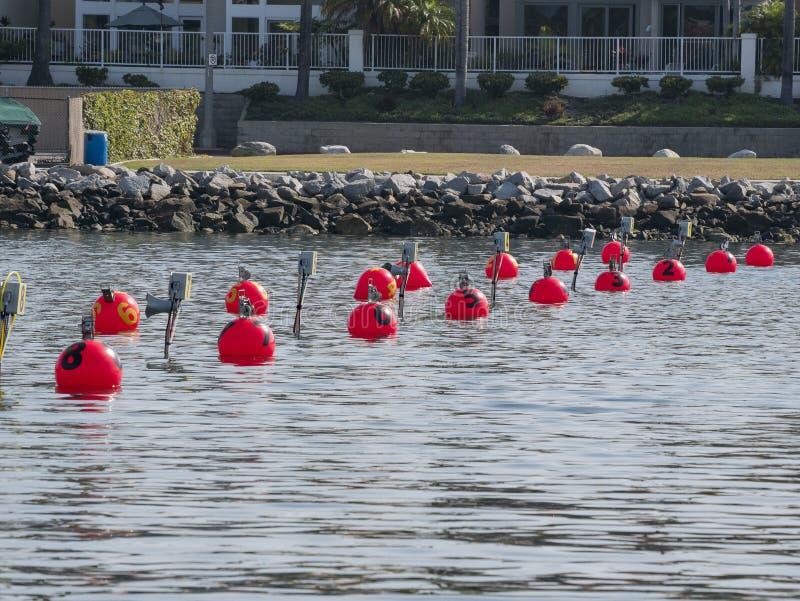 Linea di partenza di Dragon Boat Festival fotografia stock