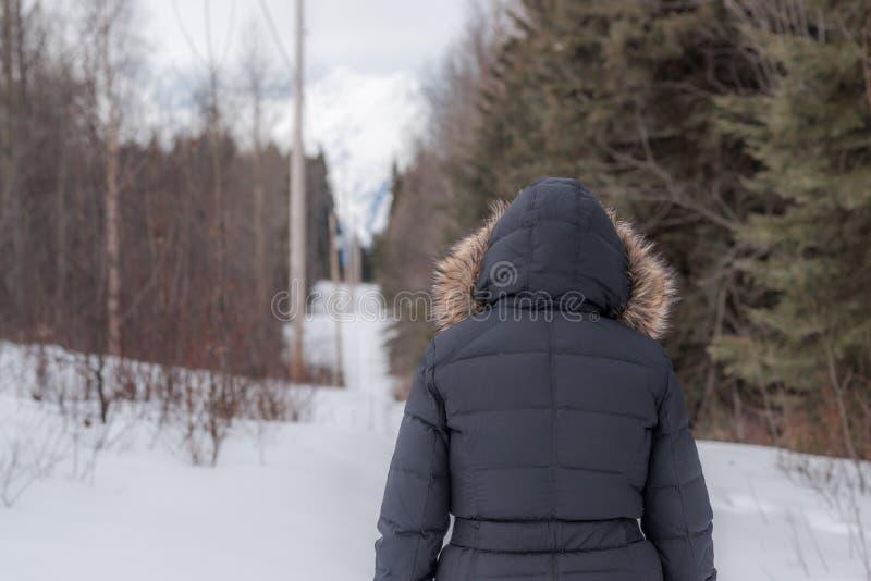 Linea elettrica passeggiata - freddo fotografia stock libera da diritti