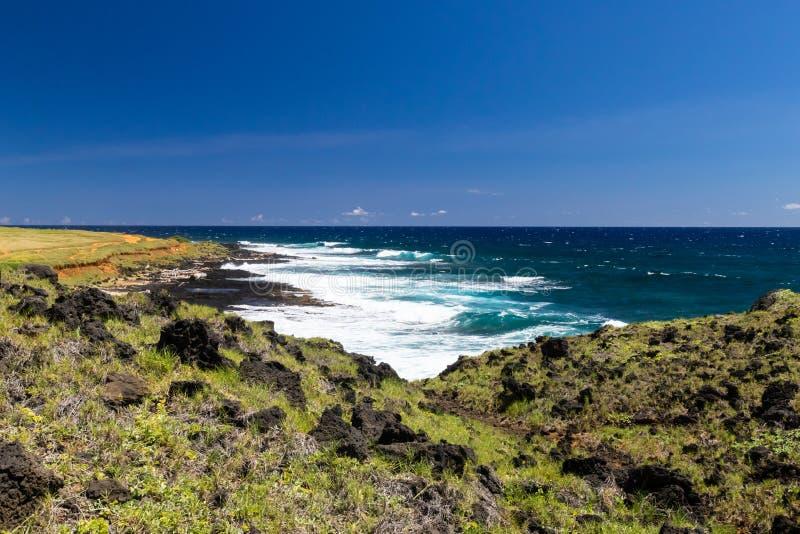 Linea hawaiana della costa, vicino a punto del sud, grande isola immagine stock