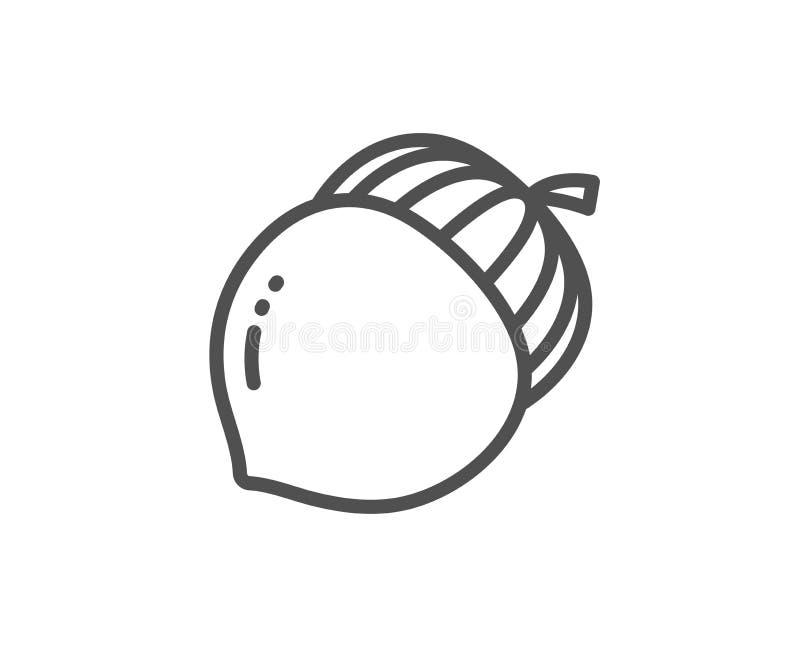 Linea icona del dado di ghianda Segno di Oaknut Seme della quercia Vettore royalty illustrazione gratis