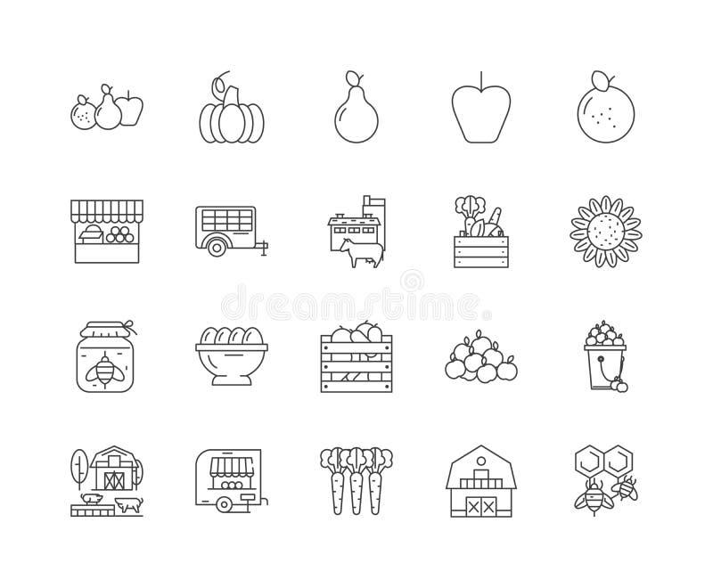 Linea icone, segni, insieme di vettore, concetto del negozio dell'azienda agricola dell'illustrazione del profilo illustrazione di stock