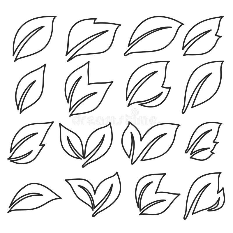 Linea naturale icone della foglia Giovani foglie delle piante, quercia dell'albero forestale, foglie della cenere e dell'olmo e v royalty illustrazione gratis