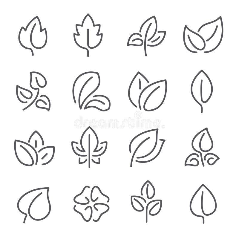 Linea naturale icone della foglia Le giovani foglie delle piante, albero forestale copre di foglie e pittogramma del profilo di v illustrazione vettoriale