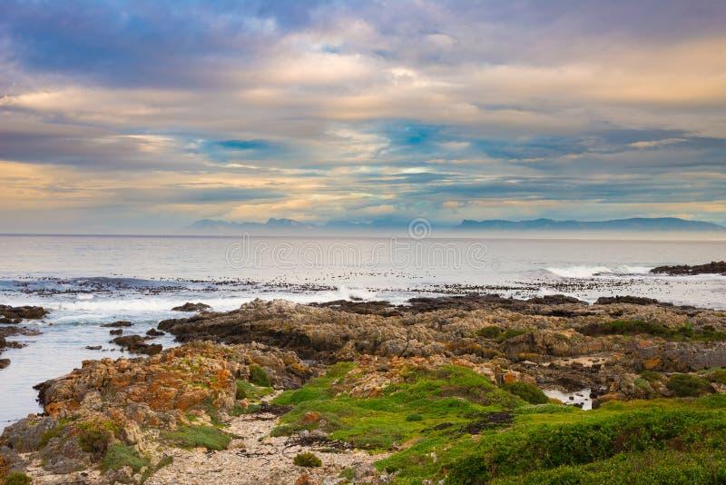 Linea rocciosa della costa sull'oceano a De Kelders, Sudafrica, famoso per la sorveglianza della balena Cielo nuvoloso e drammati fotografia stock libera da diritti