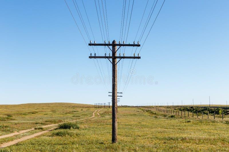 Linea sopraelevata sui supporti di legno nella steppa mongola immagine stock libera da diritti