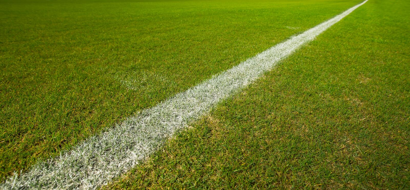 Linea su erba verde immagine stock libera da diritti
