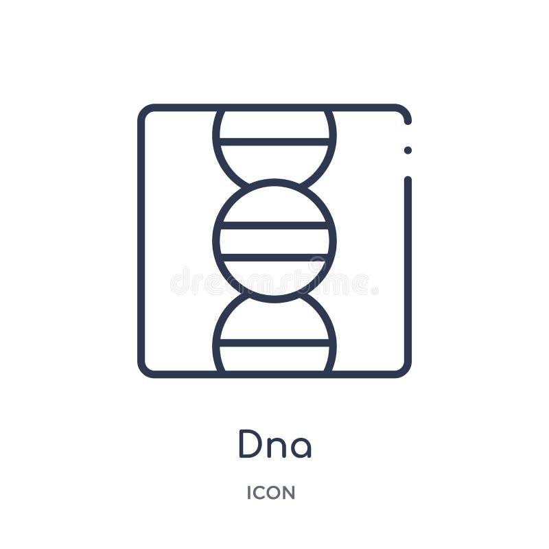 Lineair DNA-pictogram van de inzameling van het Onderwijsoverzicht De dunne die vector van lijndna op witte achtergrond wordt geï stock illustratie