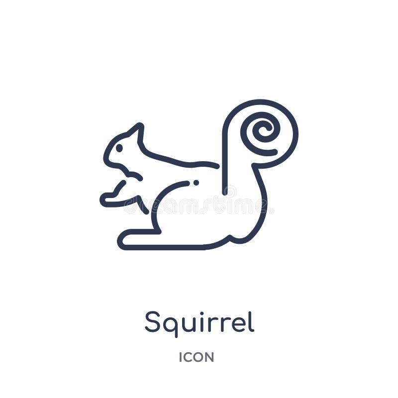 Lineair eekhoornpictogram van de inzameling van het Dierenoverzicht Het dunne pictogram van de lijneekhoorn dat op witte achtergr stock illustratie