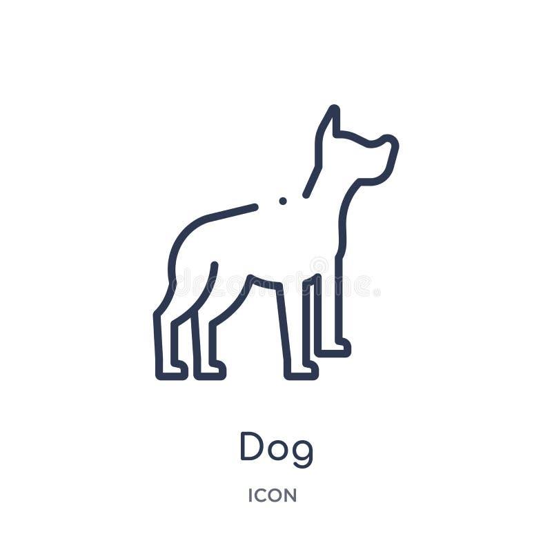 Lineair hondpictogram van de inzameling van het Meubilairoverzicht Het dunne die pictogram van de lijnhond op witte achtergrond w royalty-vrije illustratie