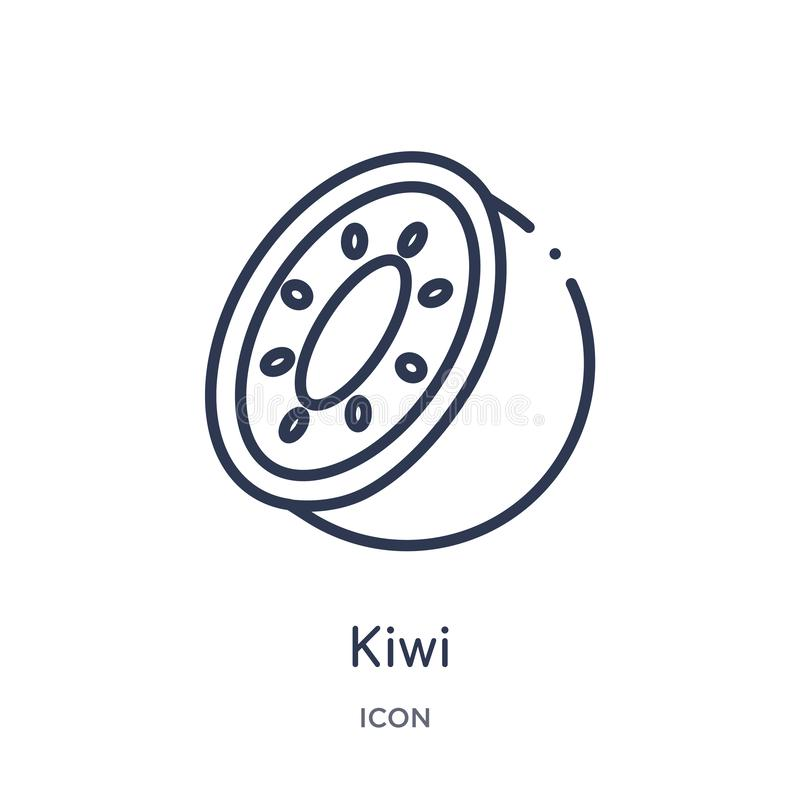 Lineair kiwipictogram van Vruchten overzichtsinzameling Het dunne pictogram van de lijnkiwi dat op witte achtergrond wordt geïsol royalty-vrije illustratie