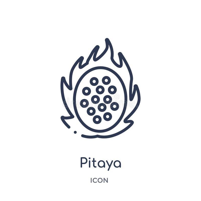 Lineair pitayapictogram van Vruchten overzichtsinzameling Het dunne die pictogram van lijnpitaya op witte achtergrond wordt geïso stock illustratie