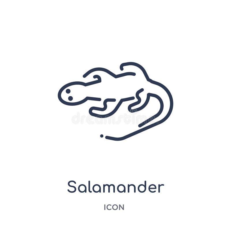 Lineair salamanderpictogram van de inzameling van het Dierenoverzicht Het dunne die pictogram van de lijnsalamander op witte acht stock illustratie