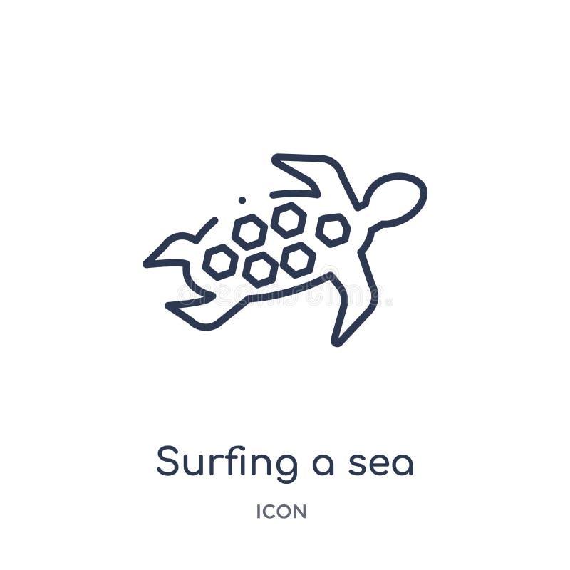 Lineair surfend een zeeschildpadpictogram van de inzameling van het Cultuuroverzicht Dunne lijn die die een zeeschildpadvector su vector illustratie