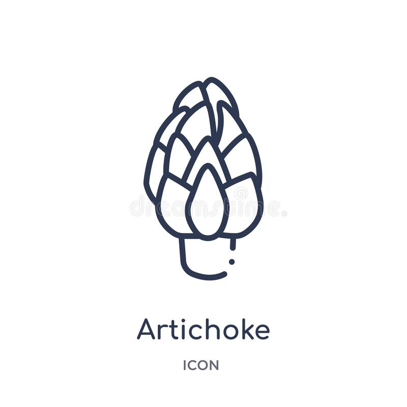 Linear artichoke icon from Fruits outline collection. Thin line artichoke icon isolated on white background. artichoke trendy stock illustration