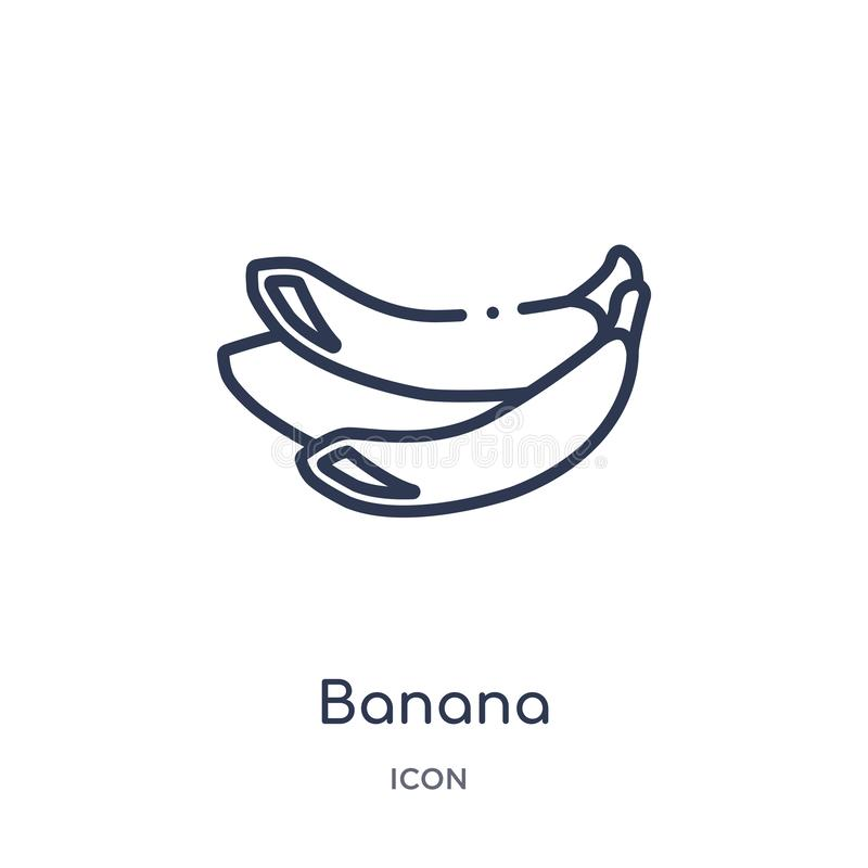 Linear banana icon from Fruits outline collection. Thin line banana icon isolated on white background. banana trendy illustration stock illustration