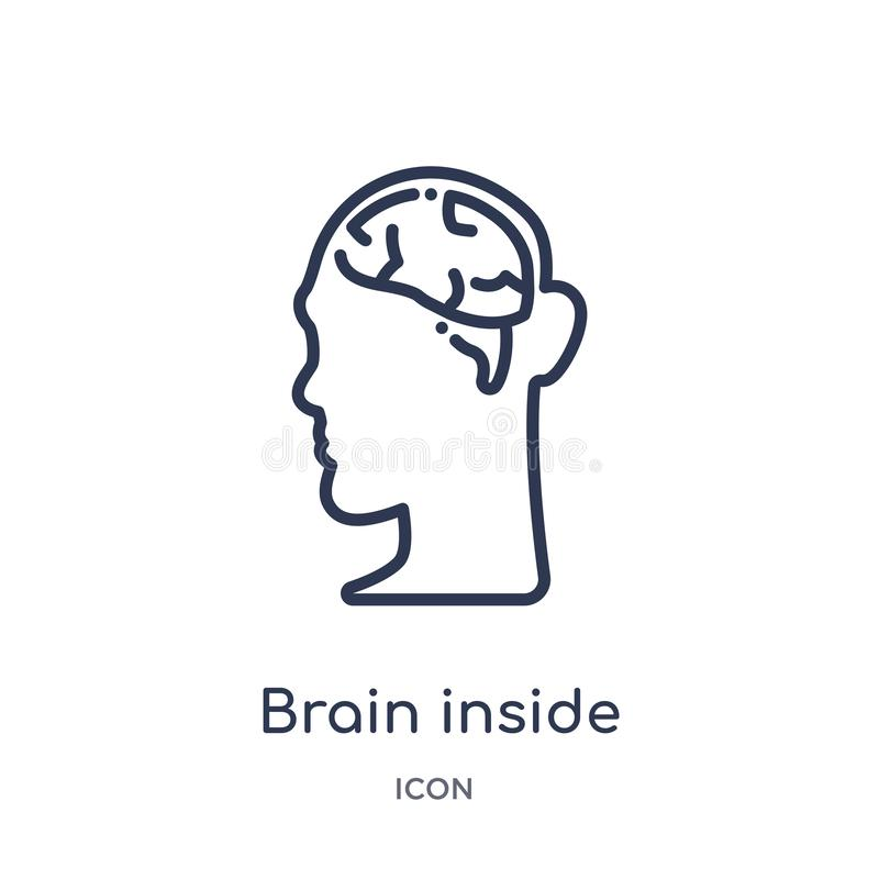 Linear brain inside human head icon from Human body parts outline collection. Thin line brain inside human head icon isolated on vector illustration
