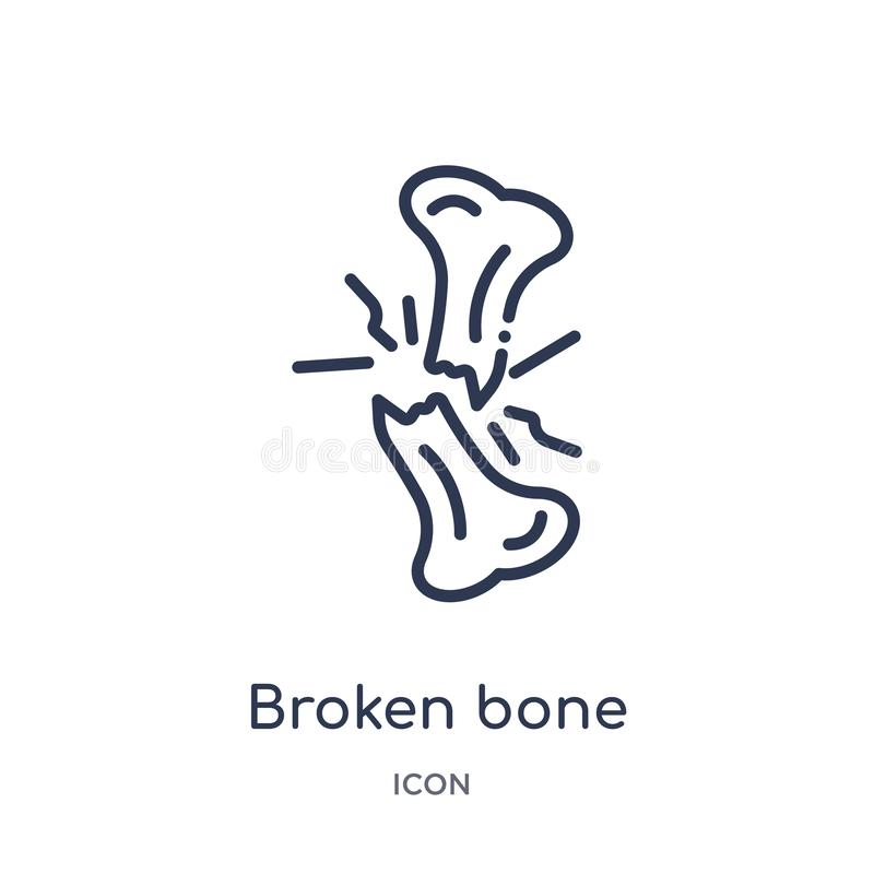 Linear broken bone icon from Human body parts outline collection. Thin line broken bone icon isolated on white background. broken royalty free illustration