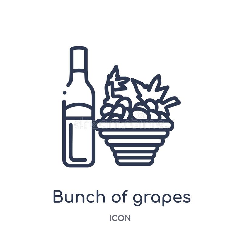 Linear bunch of grapes icon from Drinks outline collection. Thin line bunch of grapes vector isolated on white background. bunch vector illustration