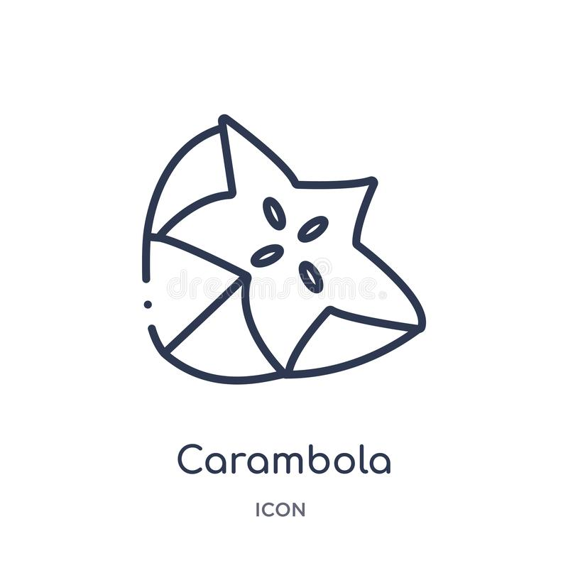 Linear carambola icon from Fruits outline collection. Thin line carambola icon isolated on white background. carambola trendy stock illustration