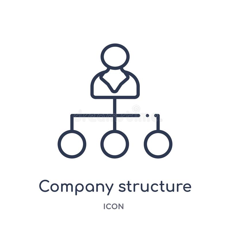 Linear company structure icon from Human resources outline collection. Thin line company structure icon isolated on white vector illustration