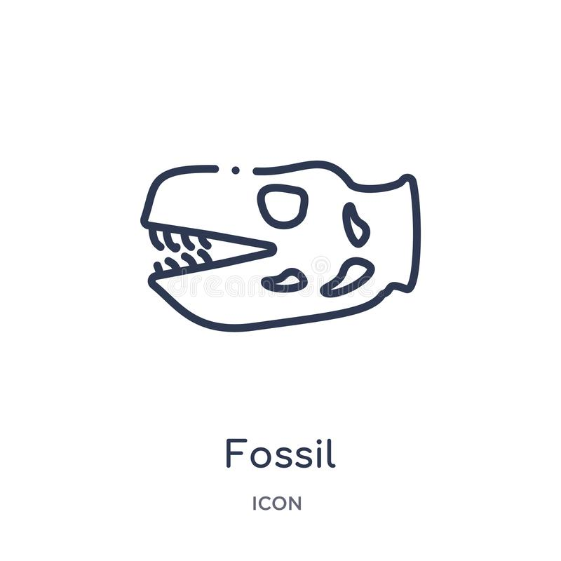 Linear fossil icon from History outline collection. Thin line fossil icon isolated on white background. fossil trendy illustration vector illustration