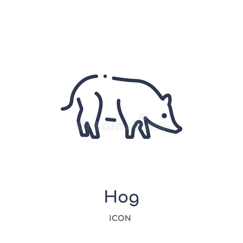 Linear hog icon from Animals and wildlife outline collection. Thin line hog vector isolated on white background. hog trendy royalty free illustration