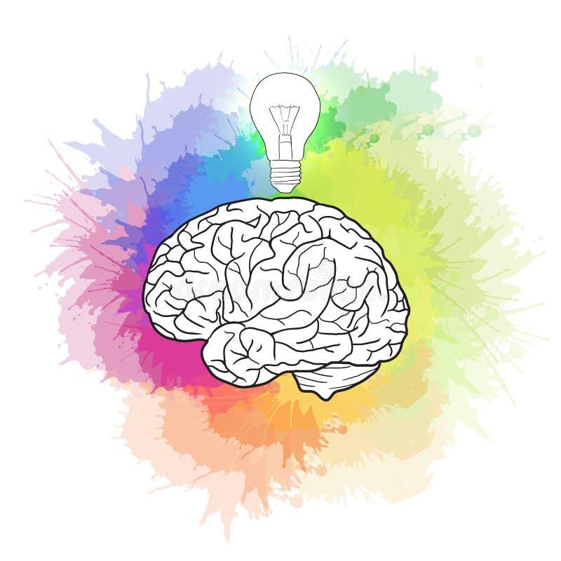 Linear illustration of human brain with light bulb stock illustration