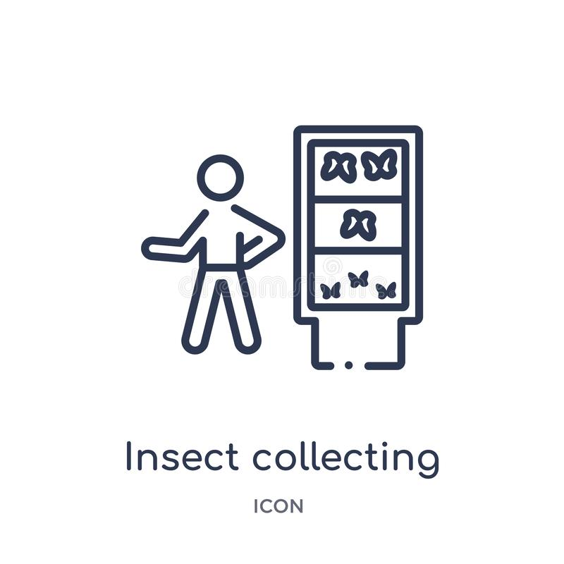 Linear insect collecting icon from Activity and hobbies outline collection. Thin line insect collecting vector isolated on white vector illustration