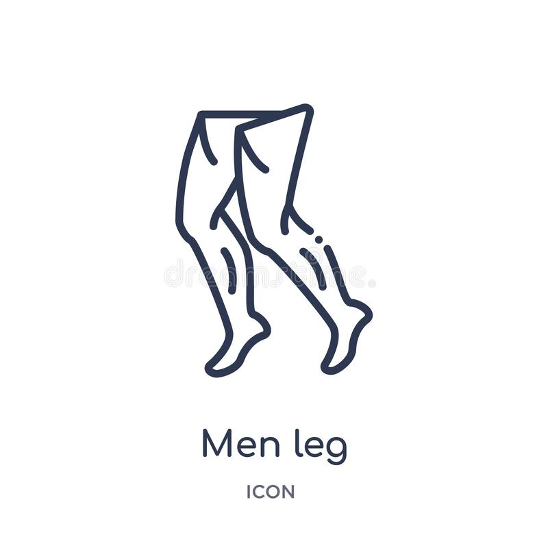 Linear men leg icon from Human body parts outline collection. Thin line men leg icon isolated on white background. men leg trendy royalty free illustration