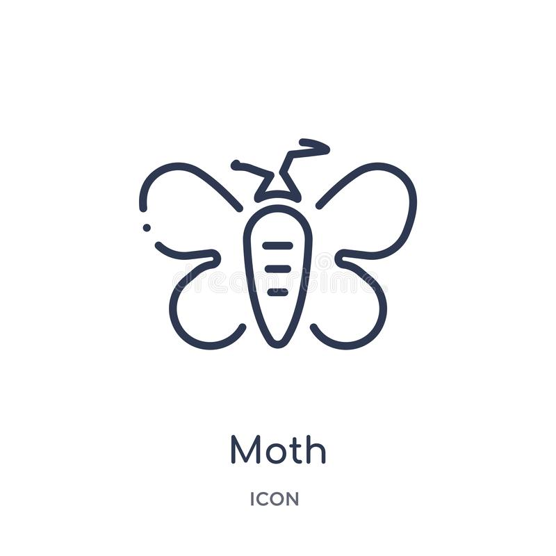 Linear moth icon from Animals and wildlife outline collection. Thin line moth vector isolated on white background. moth trendy royalty free illustration