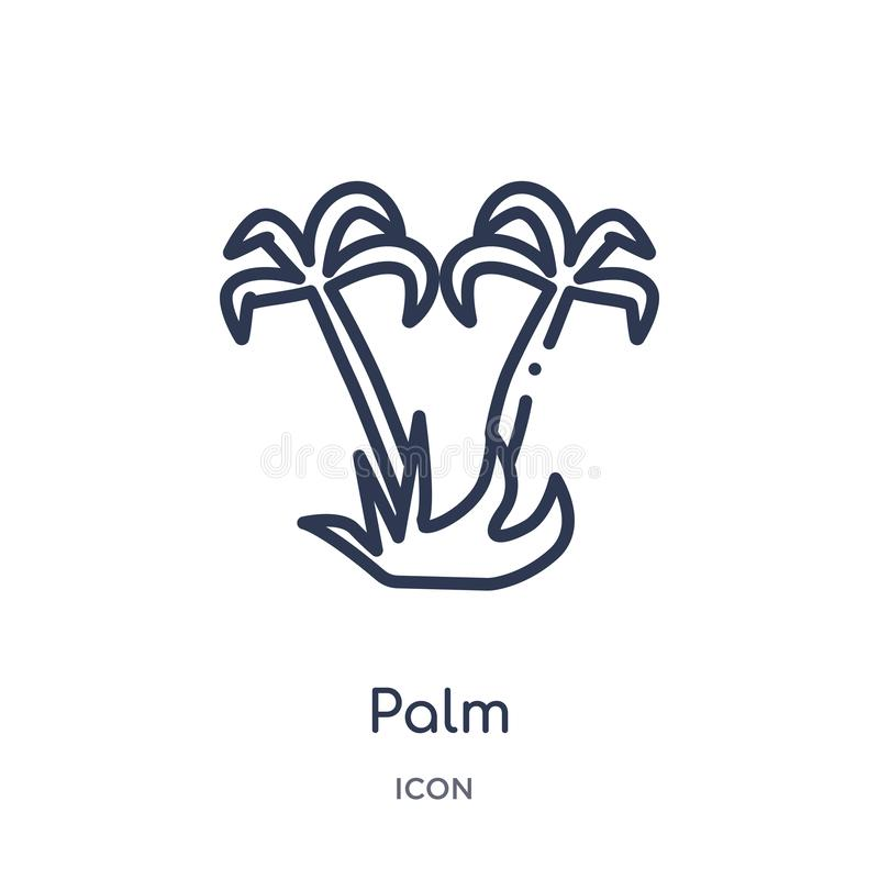Linear palm icon from Desert outline collection. Thin line palm vector isolated on white background. palm trendy illustration vector illustration