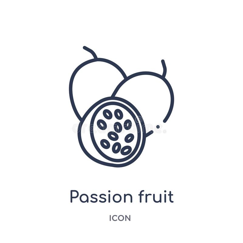 Linear passion fruit icon from Fruits outline collection. Thin line passion fruit icon isolated on white background. passion fruit stock illustration