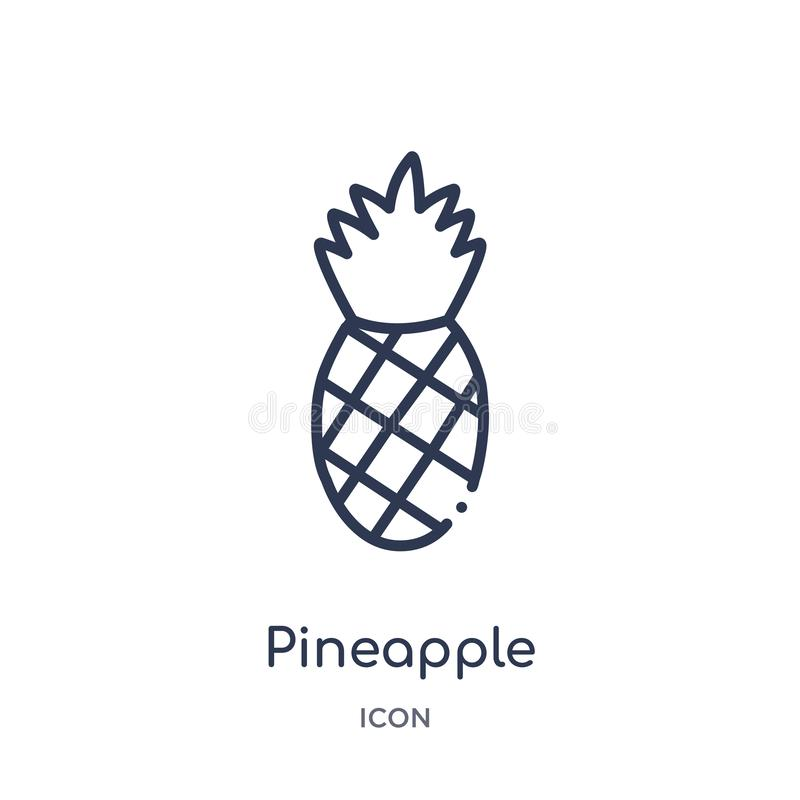 Linear pineapple icon from Brazilia outline collection. Thin line pineapple vector isolated on white background. pineapple trendy vector illustration