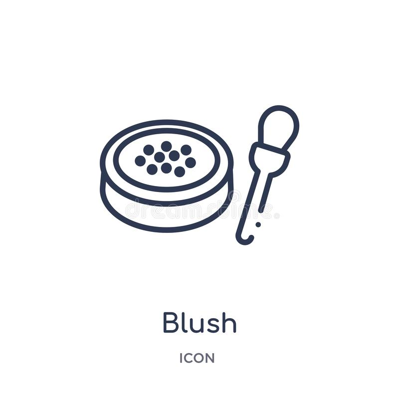 Linear se ruboriza el icono de la colección del esquema de la belleza La línea fina se ruboriza vector aislada en el fondo blanco stock de ilustración