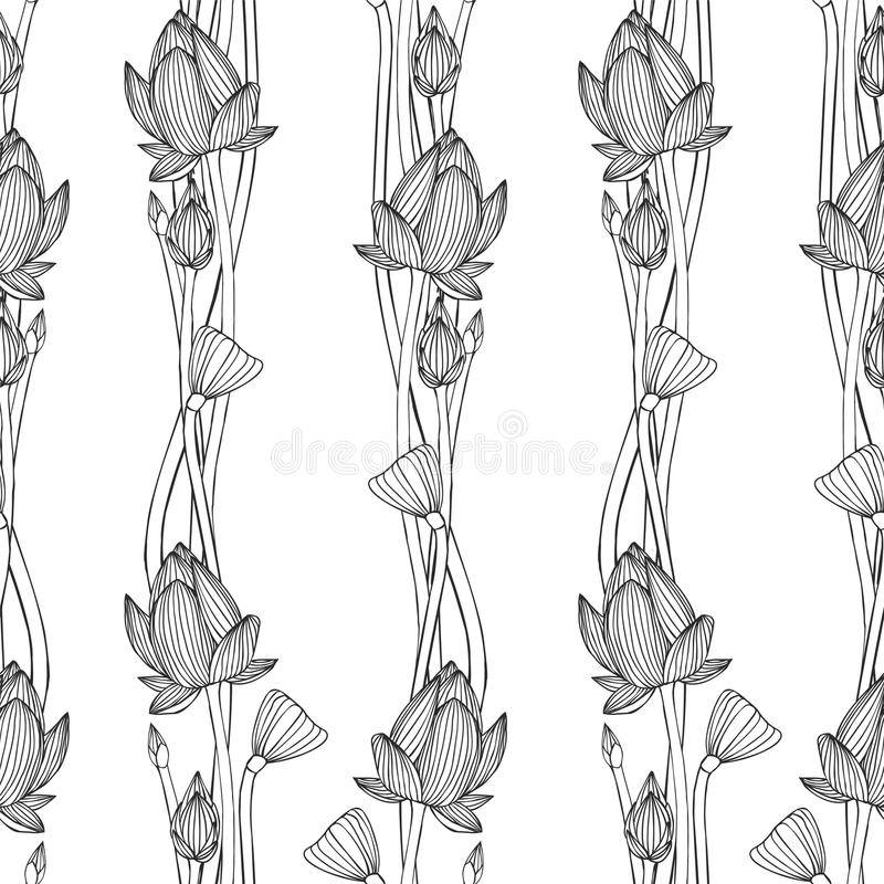 Linear seamless pattern - lotus flower. royalty free illustration