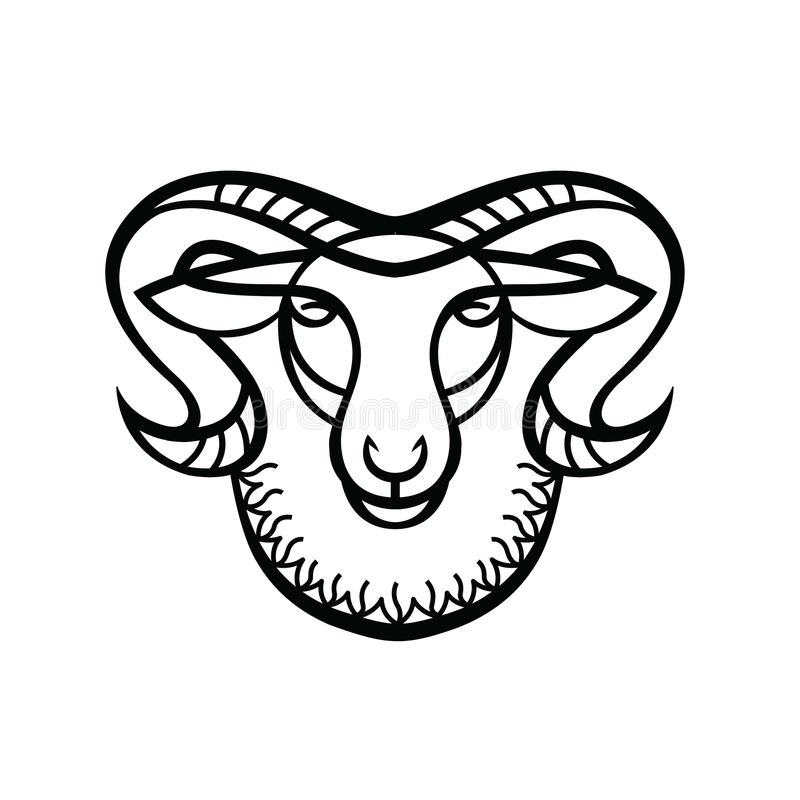 Linear Stylized Drawing - Head Of Sheep Or Ram Stock Vector ...