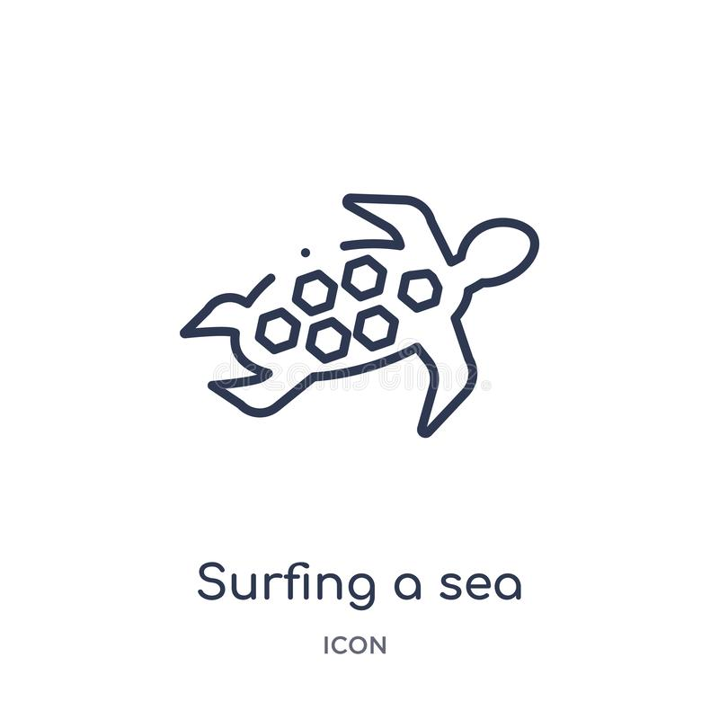 Linear surfing a sea turtle icon from Culture outline collection. Thin line surfing a sea turtle vector isolated on white vector illustration