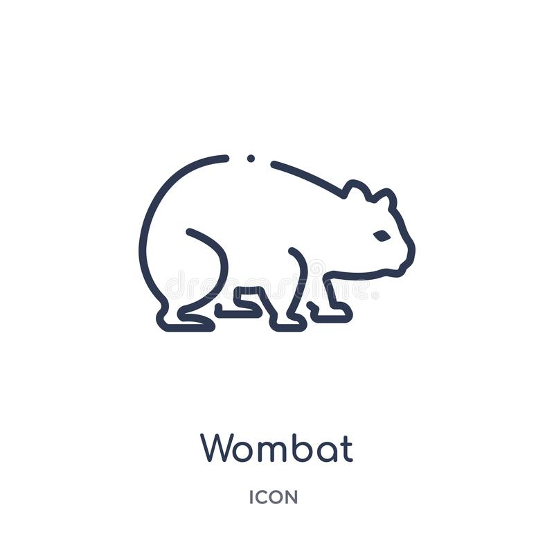 Linear wombat icon from Animals and wildlife outline collection. Thin line wombat vector isolated on white background. wombat stock illustration
