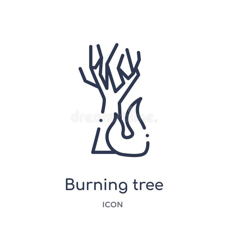 Lineare brennende Baumikone von der Meteorologieentwurfssammlung Dünne Linie brennende Baumikone lokalisiert auf weißem Hintergru lizenzfreie abbildung
