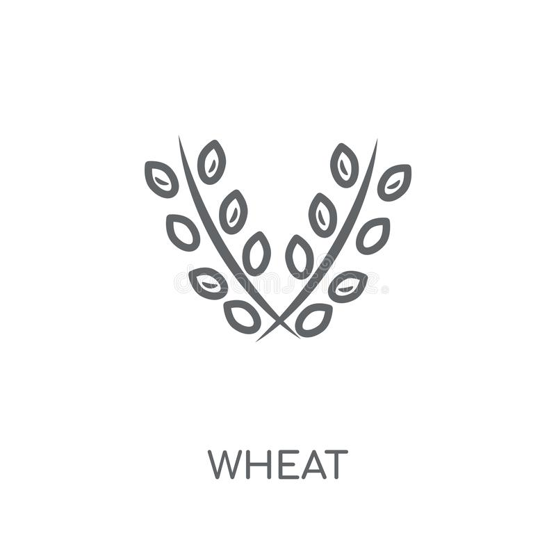 Lineare Ikone des Weizens Modernes Entwurf Weizen-Logokonzept auf weißem Ba lizenzfreie abbildung