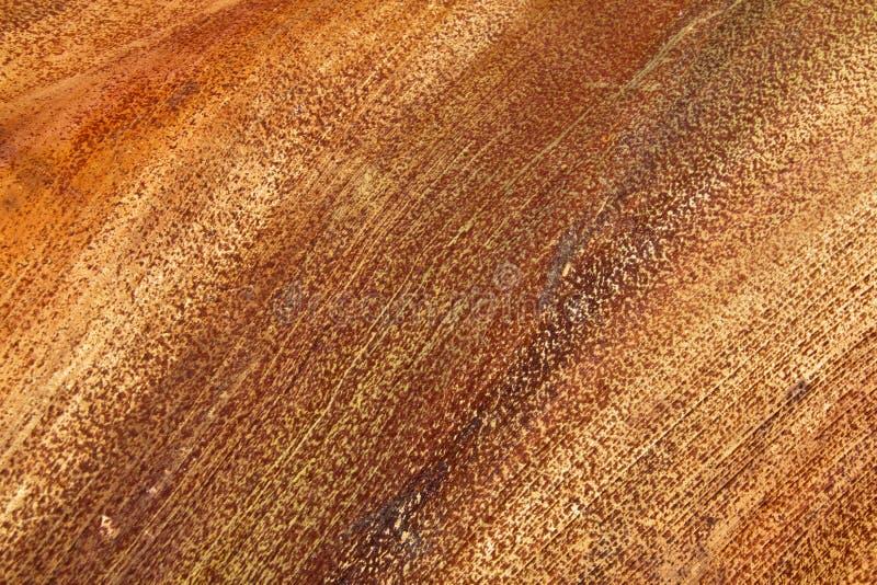 Lineare Muster und Beschaffenheiten auf Basis des Palmblattes lizenzfreie stockfotos